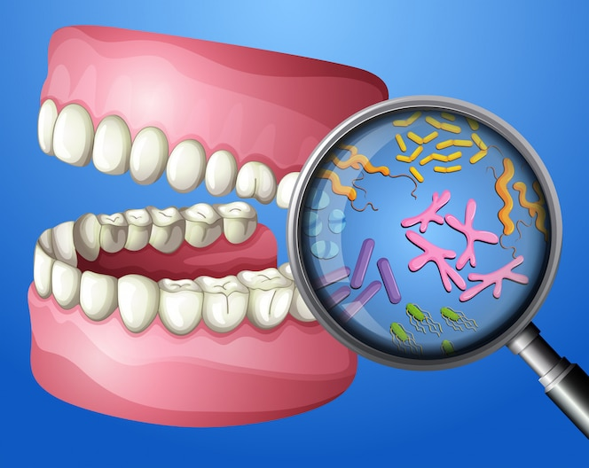 A close-up oral bacteria