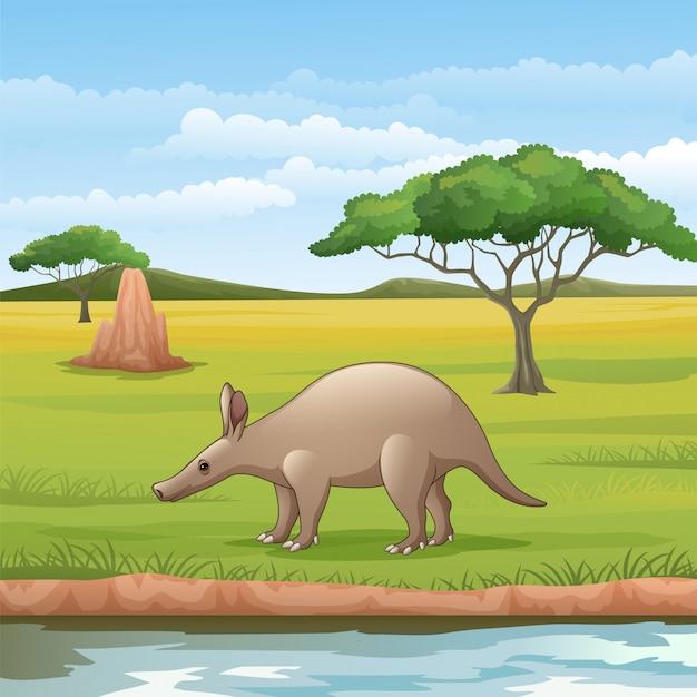 Aardvark de dibujos animados en la sabana