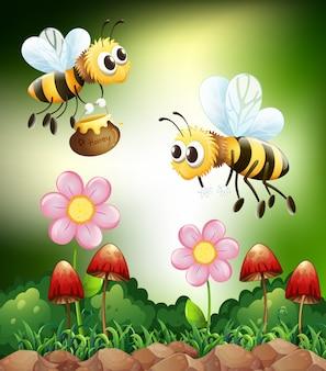 Abeja y miel