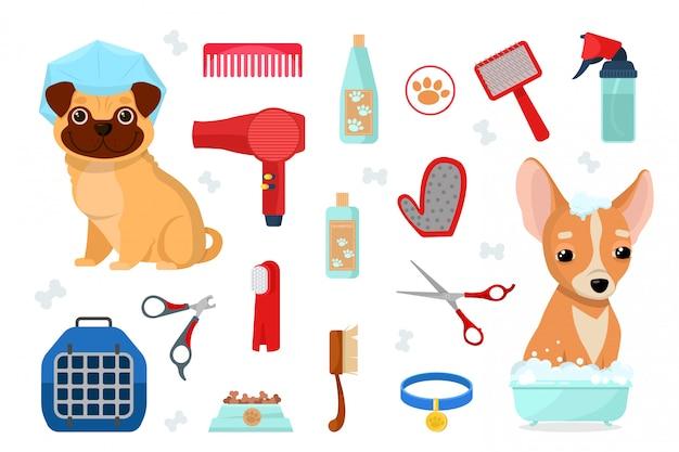 Accesorios para el cuidado y perros.