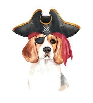 Acuarela beagle con venda pirata y gorro pirata.