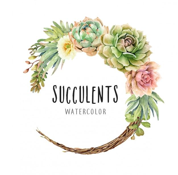 Acuarela de cactus y suculentas sobre corona de vid.