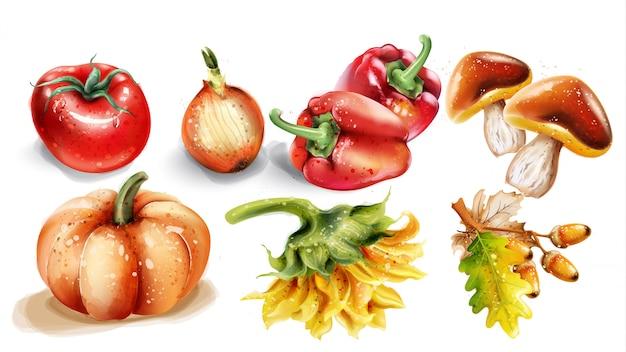 Acuarela de calabaza, champiñones y verduras. conjunto de cosecha otoño otoño