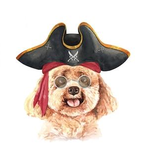 Acuarela caniche con gafas de sol y sombrero pirata.