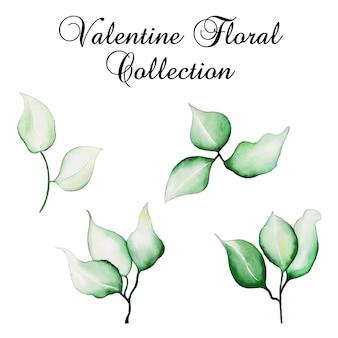 Acuarela colección floral san valentín