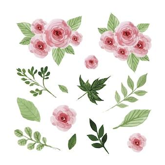 Acuarela conjunto flores y hojas.