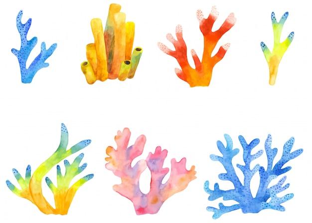 Acuarela conjunto de imágenes prediseñadas de arrecifes de coral