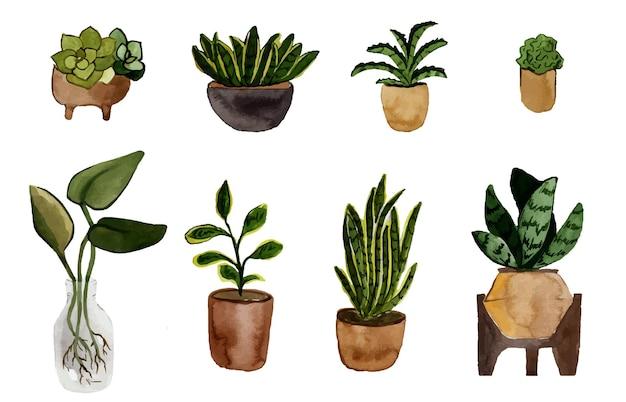 Acuarela conjunto de plantas en macetas aislado en blanco