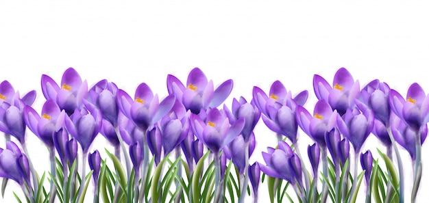 Acuarela de fondo de flores de azafrán