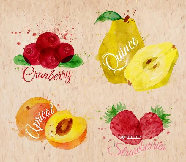 Acuarela de frutas arándano, membrillo, albaricoque kraft.