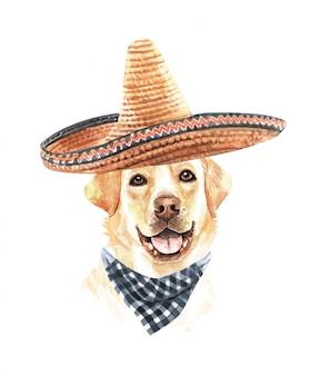 Acuarela de labrador con sombrero mexicano y bufanda a cuadros.
