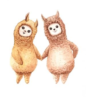 Acuarela llama dibujos animados de alpaca