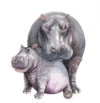 Acuarela mamá y bebé hipopótamo