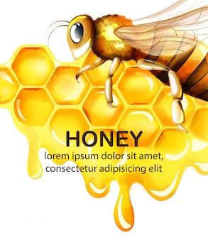 Acuarela de miel con panal y gran abeja volando