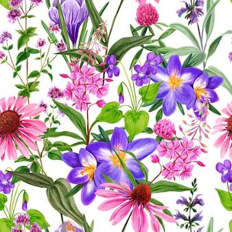 Acuarela de patrones sin fisuras, flores silvestres de campo y hierbas