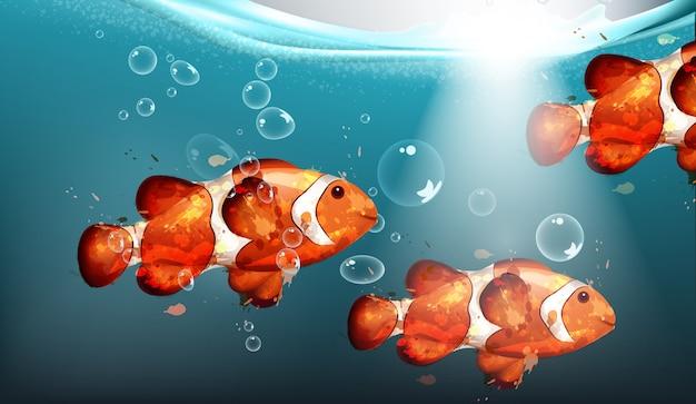 Acuarela de peces dorados