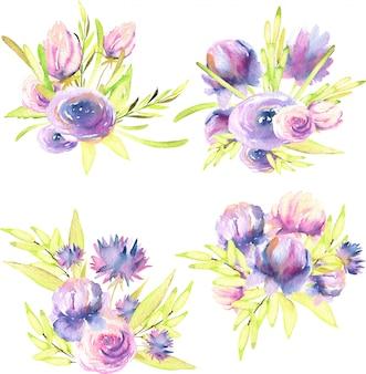 Acuarela de peonías moradas y rosas, ramos de rosas y asters.