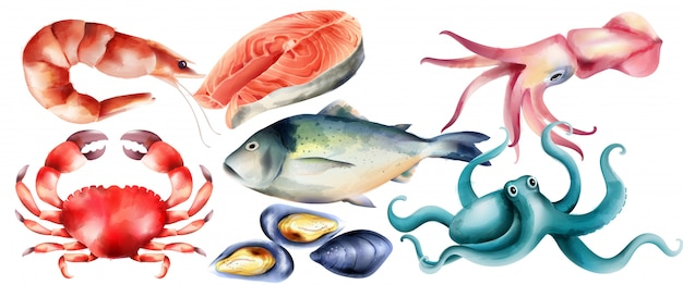 Acuarela de pescado fresco y moluscos del mar