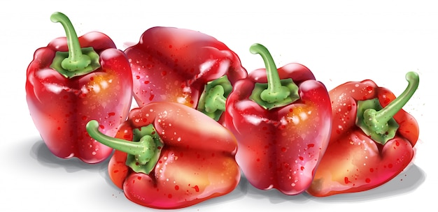 Acuarela de pimiento rojo. verduras saludables frescas aisladas