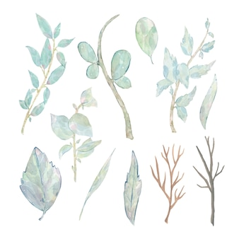Acuarela pintada a mano hojas verdes rama aislado en blanco