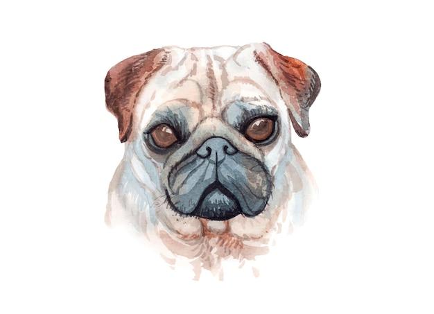 Acuarela pintada a mano ilustración de perro pug