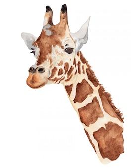 Acuarela retrato de una jirafa