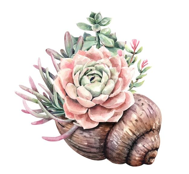 Acuarela suculentos cactus y ramo de cactus con maceta de conchas.