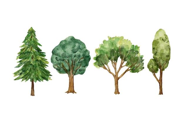 Acuarela tipo de colección de árboles.