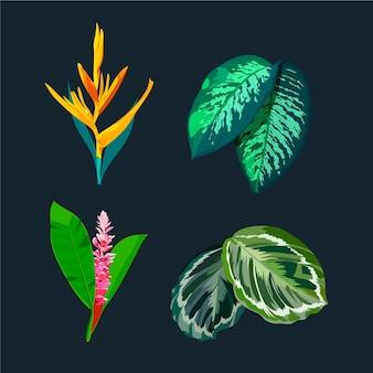Acuarelas hermosas flores tropicales y hojas
