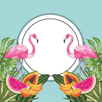 Adhesivo circular con flamenco y frutas tropicales.
