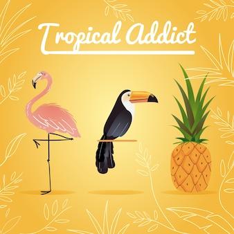 Adicto tropical