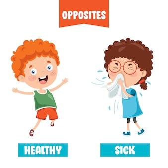 Adjetivos opuestos con dibujos de dibujos animados