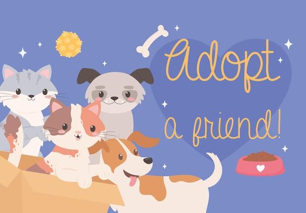 Adopta a un amigo