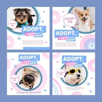Adopta una plantilla de publicación de instagram para mascotas