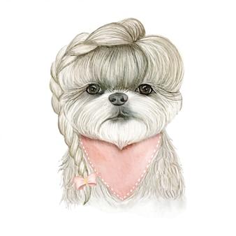 Adorable perro lindo con pelo en trenzas cinta ilustración acuarela