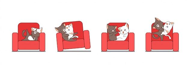 Adorables gatos lindos en el sofá