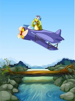 Un aeroplano de tortuga