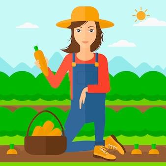 Agricultor recolectando zanahorias.