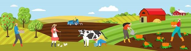 El agricultor trabaja en la ilustración del campo de la granja, la gente plana de dibujos animados en el campo de las tierras de cultivo, la vaca lechera, alimenta el pollo o planta vegetales