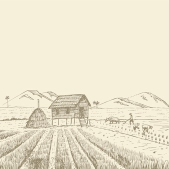 Agricultores dibujados a mano cosechando arroz en tailandia