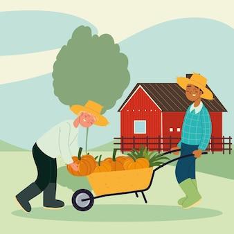 Agricultores llevando calabazas