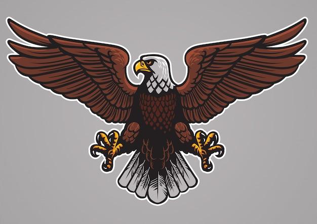 Águila calva extendió las alas.