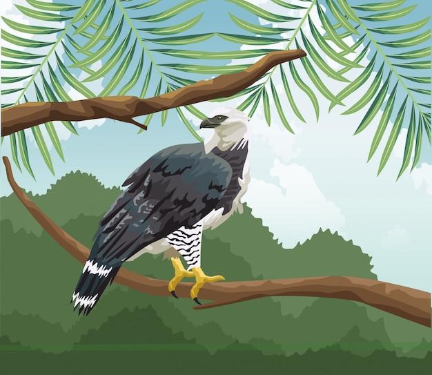 Águila en rama fauna tropical y paisaje de flora