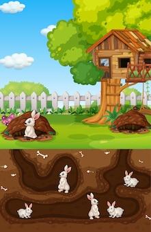 Agujero de animal subterráneo con muchos conejos blancos.