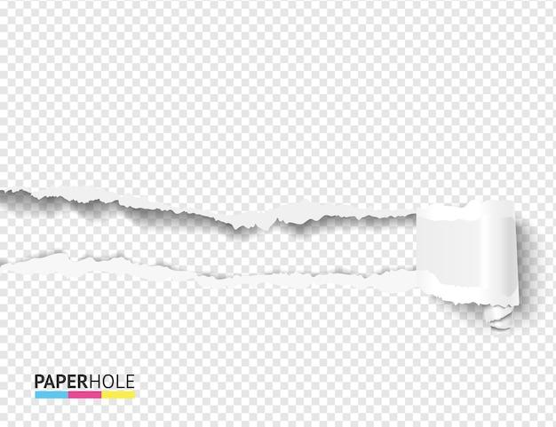 Agujero de papel rasgado en blanco con rollo de cartón rizado