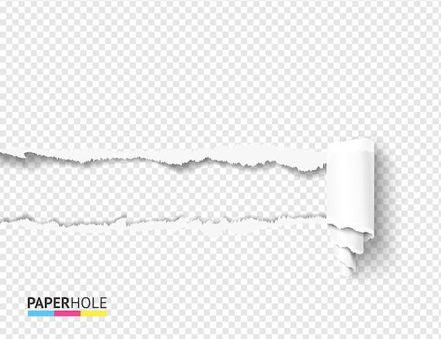 Agujero de papel rasgado realista con rollo de cartón rizado