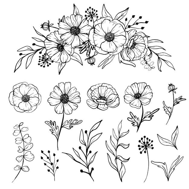 Aislado, margarita, arte lineal, floral clipart