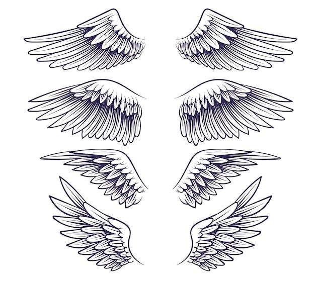 Ala dibujada a mano. boceto de alas de ángel con plumas, elementos para el logo