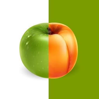 Albaricoque y manzana verde. ilustración