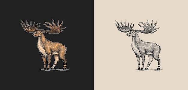 Alce irlandés o ciervo gigante o gran cuerno mamíferos prehistóricos animal extinto vector retro vintage